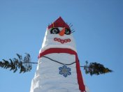The world's tallest