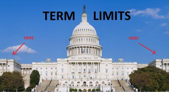 "Term Limits Will Change ""business as usual"" feature image"